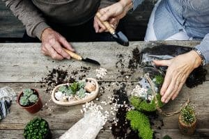 couple prepairing soil for plants