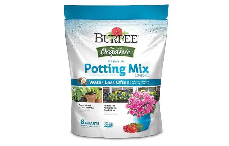Alternative: Burpee Organic Premium Potting Mix, 8 quart Review