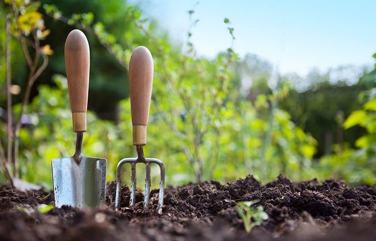 starting soil mix benefits