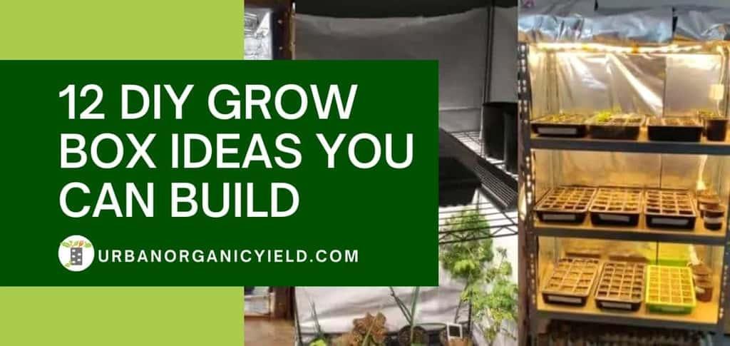 12 DIY Grow Box Ideas You Can Build