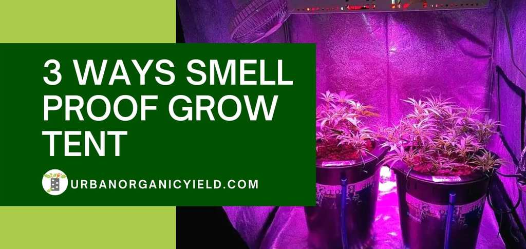 3 Ways Smell Proof Grow Tent