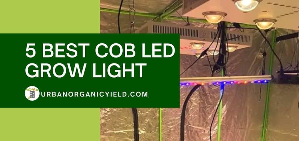 5 Best COB LED Grow Light