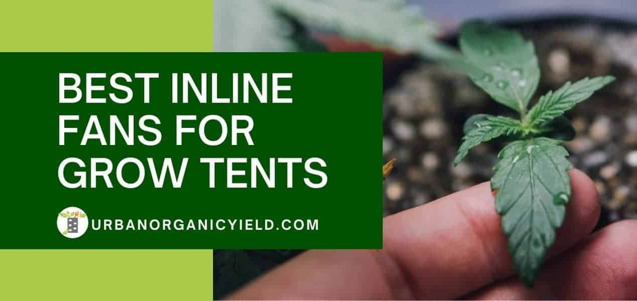 Best Inline Fans For Grow Tents