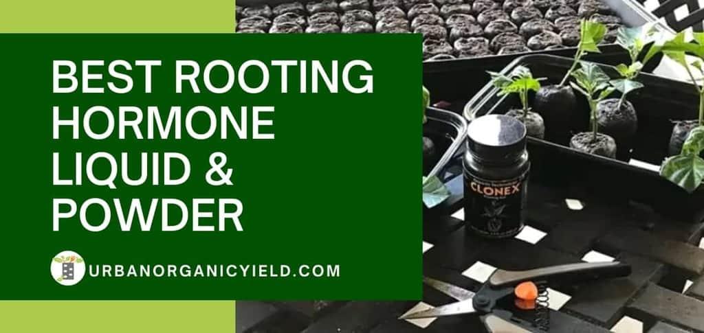 Best Rooting Hormone Liquid Powder