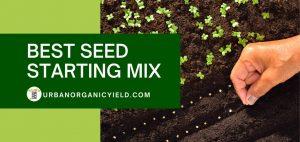 best seed starting mix kits