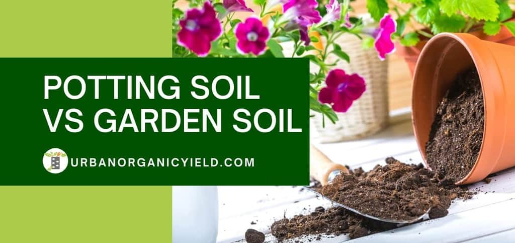 Potting Soil vs Garden Soil: What's the Difference? Can I Use Garden Soil in Pots? | UrbanOrganicYield.com