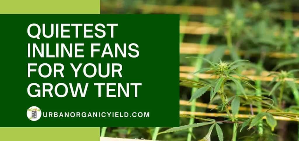 Quietest Inline Fans Grow Tent