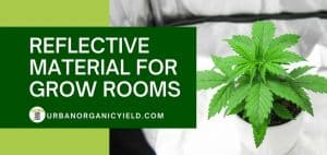 Reflective Material in Grow Room