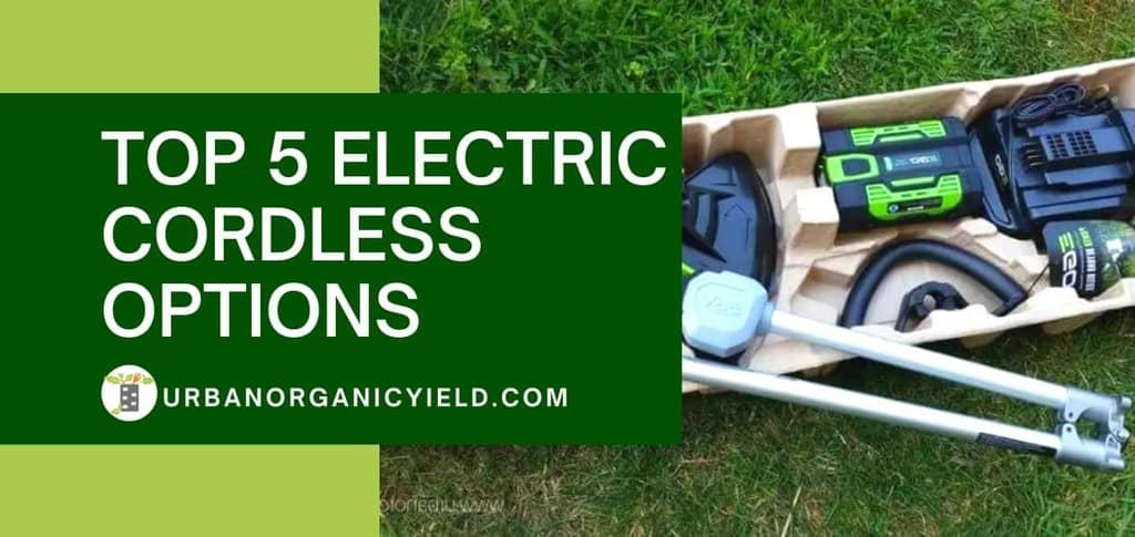 Top 5 Electric Cordless Options