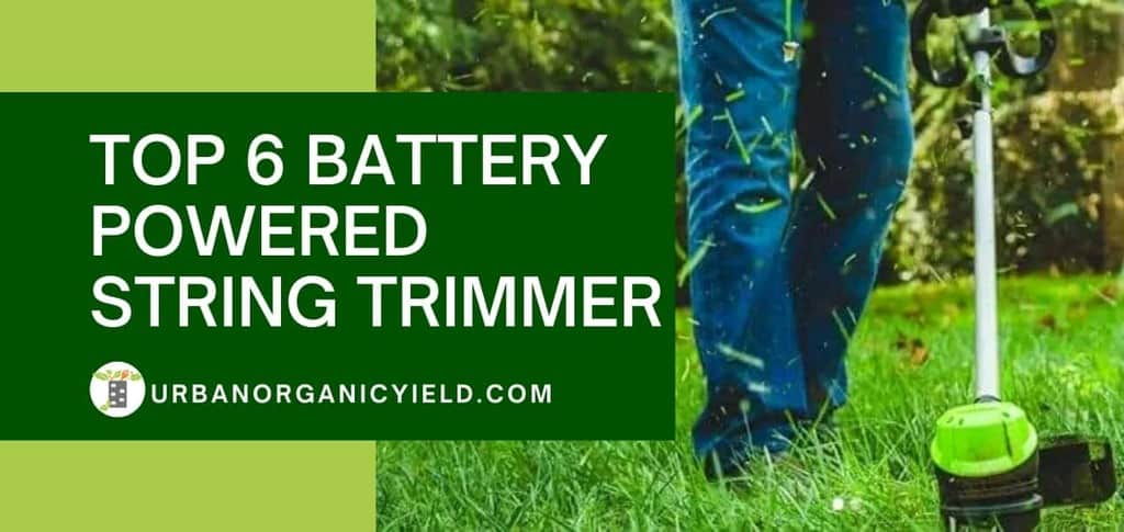 Top 6 Battery Powered String Trimmer