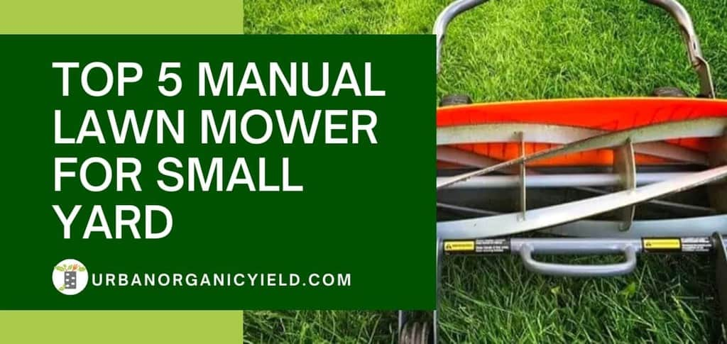 top 5 Manual Lawn Mower For Small Yard