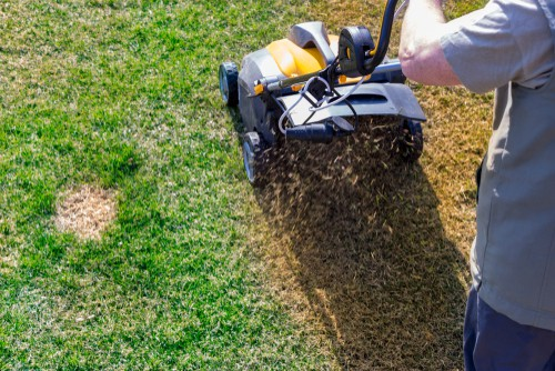 aerating the lawn - when to stop watering the lawn