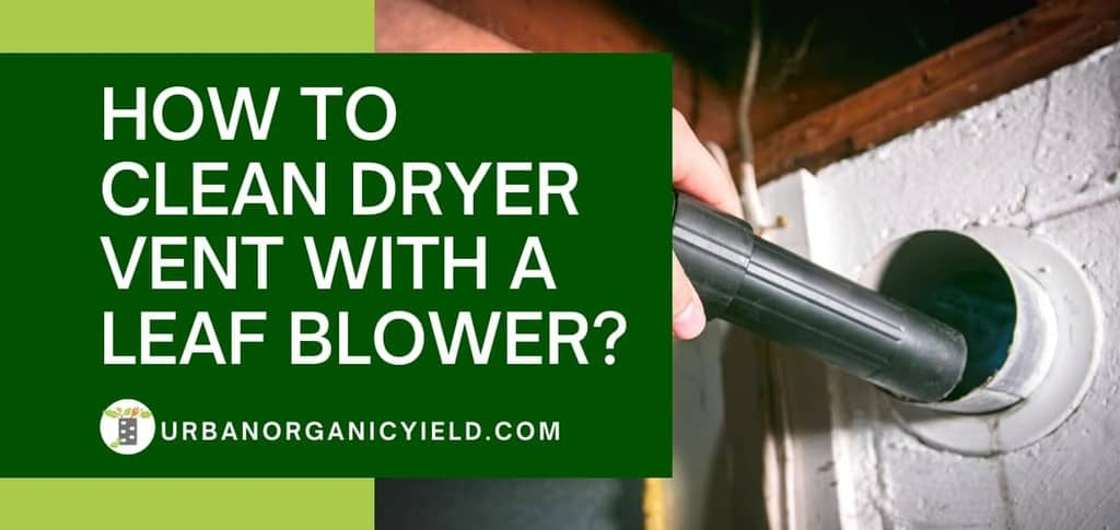 how to clean dryer vent with a leaf blower