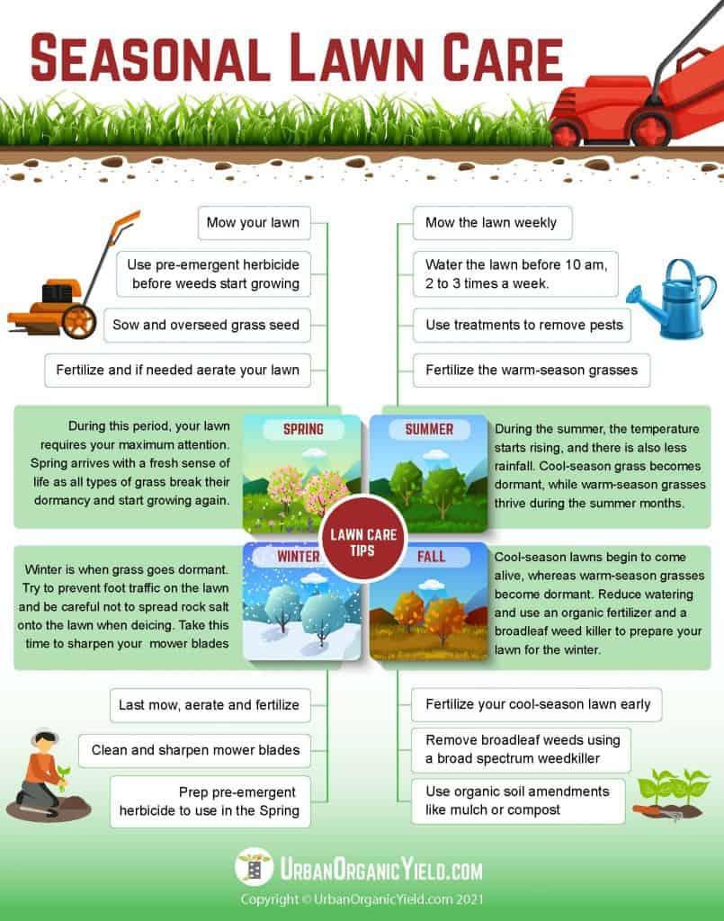 Seasonal Lawn Care Guide | UrbanOrganicYield.com