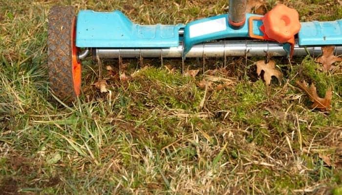 fertilizer-aerate-lawn-in-autumn