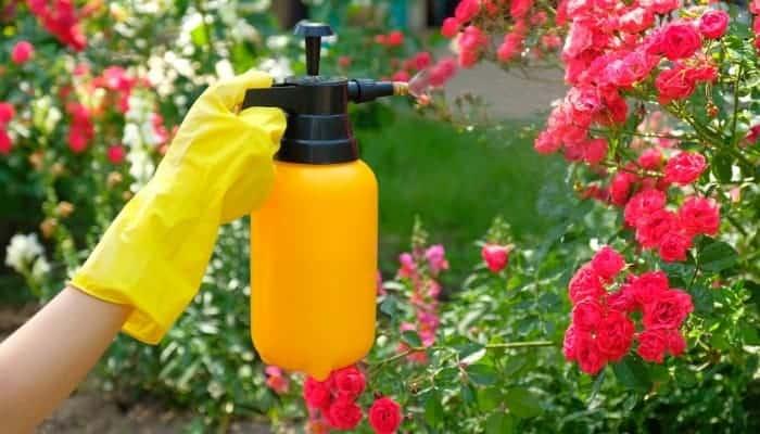 homemade soap spraying