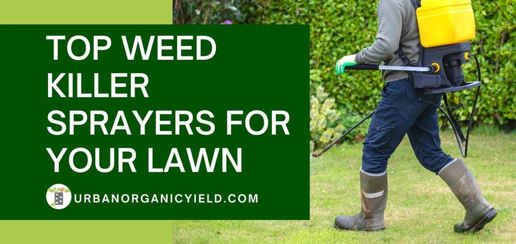 top-weed-killer-sprayers-for-your-lawn