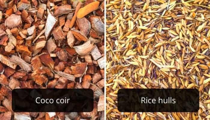coco-coir-vs.-rice-hulls