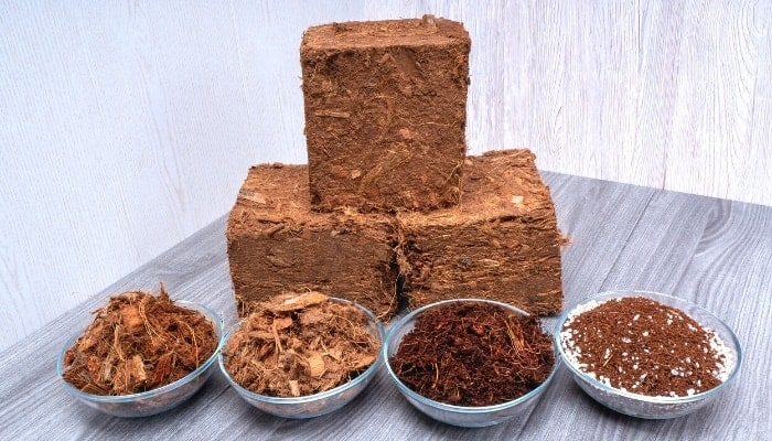 how-to-choose-high-quality-coconut-coir