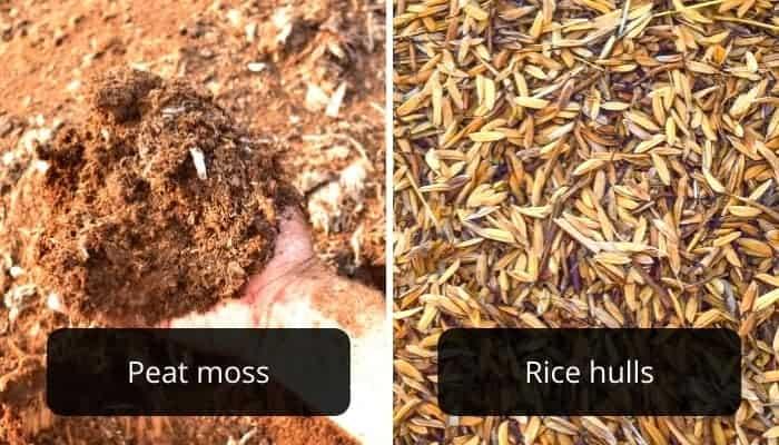 peat-moss-vs.-rice-hulls