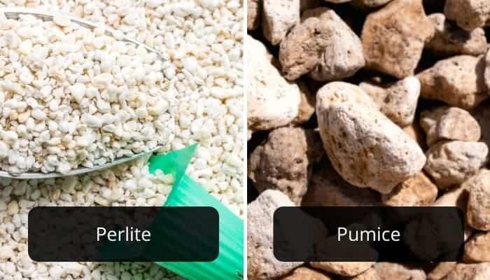perlite-vs.-pumice-comparison