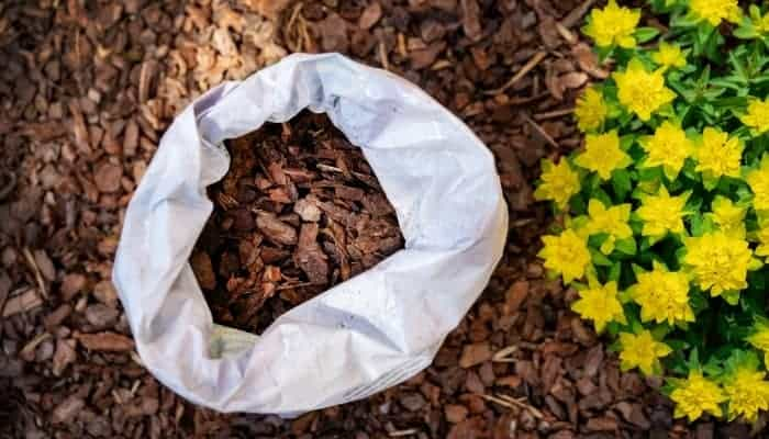 pine-bark-hydroponic-growing-medium