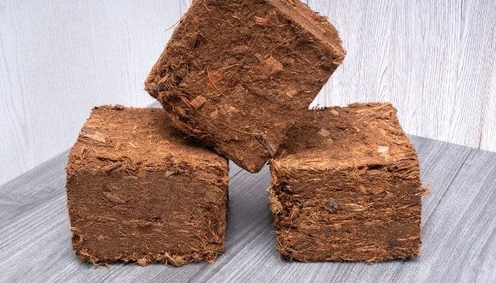what-are-coco-bricks