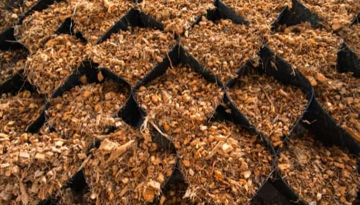 what-is-coco-coir